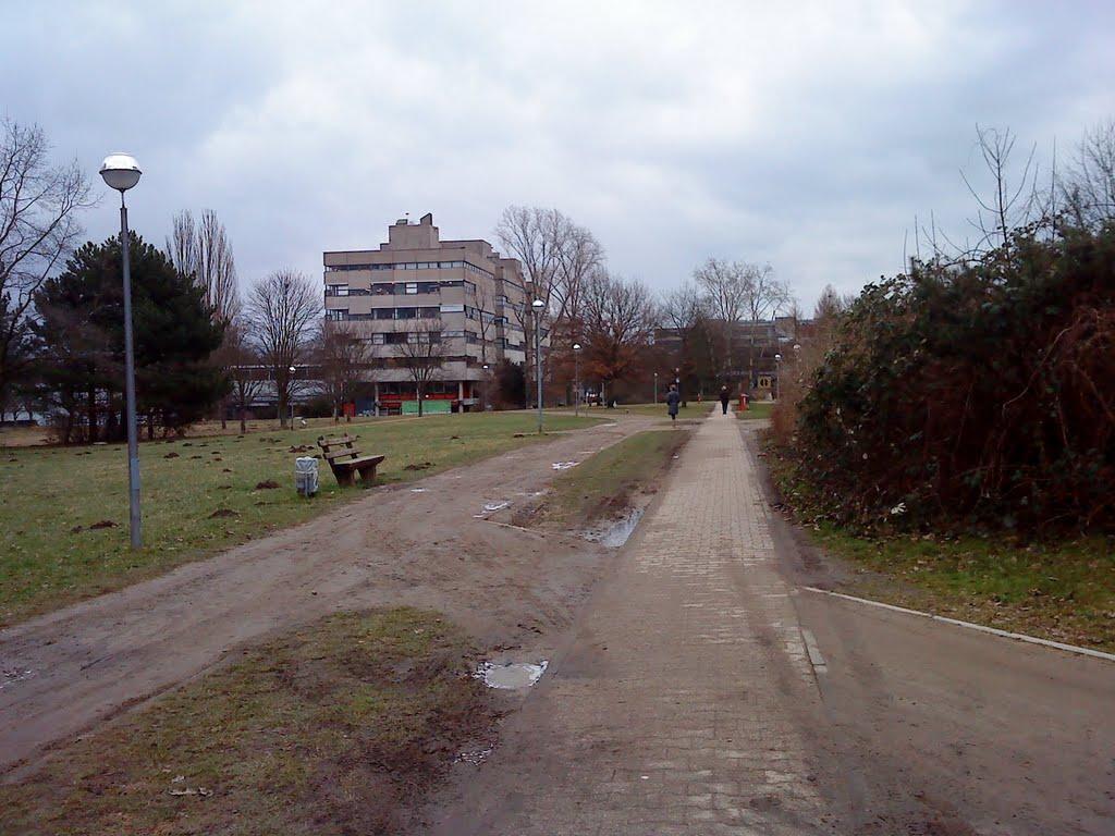 Die Strecke, an der die Lichtwiesenbahn entlang verlaufen wird