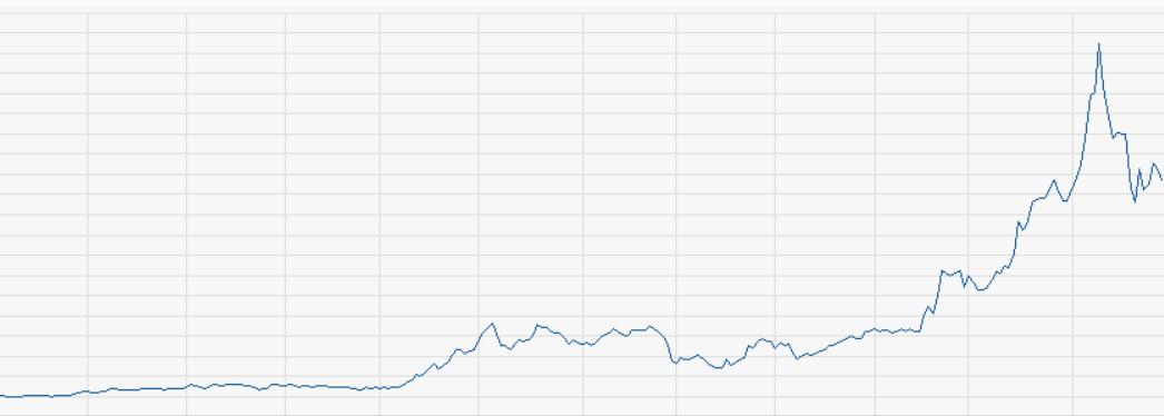 Amazon Kurs 1998-1999
